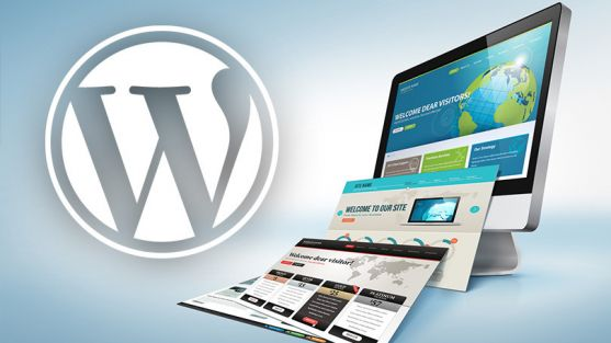 SEOday. SEO amb WordPress de 0 a 100